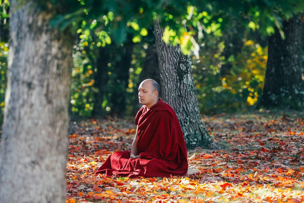 Karmapa Meditating in the USA