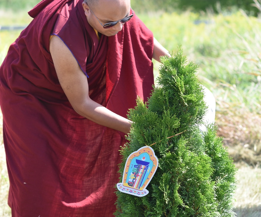 Karmapa plants a new tree